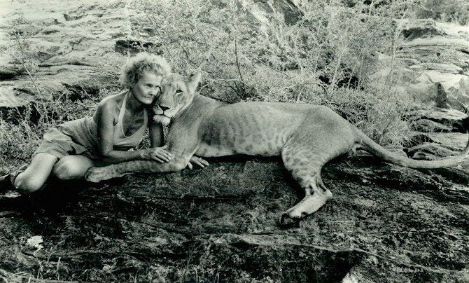 Joy Adamson with lioness Elsa.