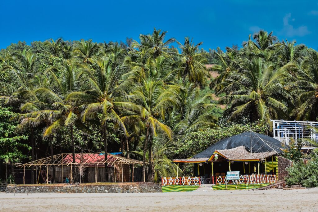 Goa is open to travellers now, but you might want to wait before you plan a trip.